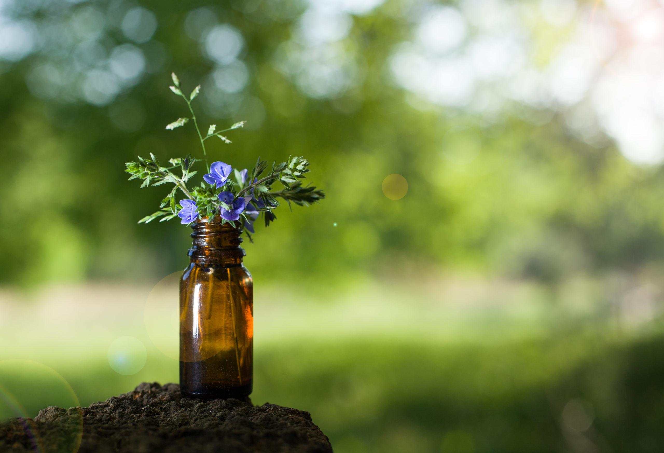 bräunliche Flasche symbolisiert Bachblütenessenz, Flasche mit blauen Blüten die in der Natur steht